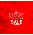 Enjoy Christmas Sale card abstract red background vector image vector image