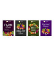 healthy food and vegetebles posters set with vector image