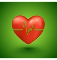 Healthy heart beat vector image vector image