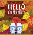 hello autumn lettering sneakers shoes on autumn vector image vector image
