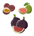 Low poly figs guava and maracuja fruits vector image
