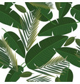 seamless pattern with and tropical leaves vector image