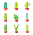 Cactus abstract flat colorful collection in vector image vector image