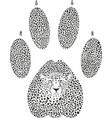 cheetah footprint vector image vector image