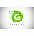g green leaf logo design eco logo with multiple vector image vector image