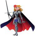 princess knight vector image