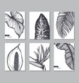 Set six cards with hand drawn tropical