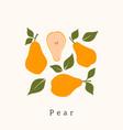 stylish pear design contemporary art print vector image vector image