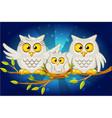cartoon funny family of grey owls vector image vector image