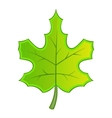 Green maple leave icon cartoon style vector image vector image