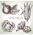 Hand drawn sketch vegetable set Eco foods vector image vector image