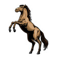 standing horse in hand drawn style vector image vector image