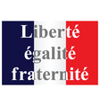 The French Republic flag vector image