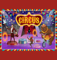 big top circus show magician animals performance vector image vector image