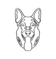 isolated german shepherd avatar vector image vector image