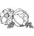 Monochrome drawing of cabbages vector image