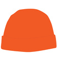 Orange winter hat vector image vector image