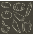 set of vegetable potato pumpkin cucumber vector image