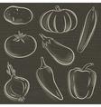 set of vegetable potato pumpkin cucumber vector image vector image