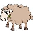 sheep farm animal cartoon vector image vector image