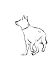 sketch of dog hand drawn vector image
