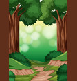 a simple forest scene vector image vector image