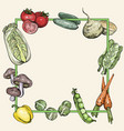 background with vegetables vector image