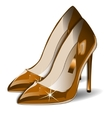 Cartoon gold Women Shoes on white vector image