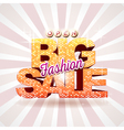 Fashion big sale vector image vector image