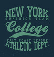 new york college t-shirt graphics vintage denim vector image vector image
