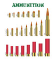 real set many types gun ammunition vector image