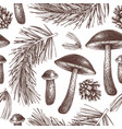 vintage forest background -pine and mushrooms vector image vector image