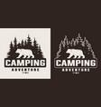 vintage monochrome summer camping print vector image