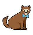 wild bear kodiak icon vector image vector image