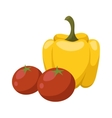 Yellow pepper and red tomato vegetable food flat vector image