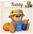 Teddy bear the Gardener Farmer Cartoon vector image