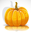 Beautiful Halloween pumpkin 1 vector image vector image