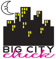 Big City Chick vector image vector image
