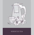 elegant teapot or glass pitcher with strainer cup vector image