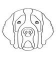 isolated saint bernard avatar vector image vector image