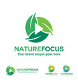 nature photography logo leaf with play button vector image vector image