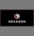nb hexagon logo design inspiration vector image vector image