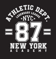 new york typography for t-shirt print sports vector image vector image