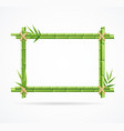 realistic 3d detailed green bamboo frame vector image