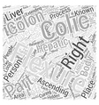 right colic flexure Word Cloud Concept vector image vector image