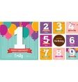 Happy Birthday set of greeting cards vector image