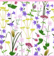 seamless srtipe pattern with seven herbs vector image
