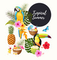 tropical summer set vector image