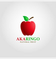 aka ringo - red apple logo template vector image vector image