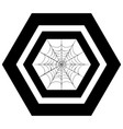 decorative spider web vector image